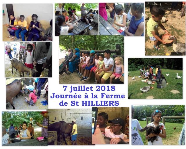 http://davout-relais.org/wp-content/uploads/2020/12/2018-juillet-7-Sortie-a-la-ferme-de-St-HILLIERS.jpg